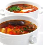 Sopas dos peixes Fotografia de Stock