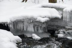 Sopel i bieżąca rzeka w Lithuania Śnieżna zima zdjęcie royalty free