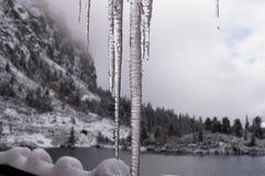 sopel Tatransky narodny park vysoke tatry Sistani obraz stock