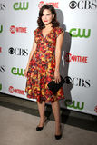 Sophia Bush. Arriving at the CBS Television Distribution TCA Stars Party at the Huntington Library in San Marino, CA on August 3, 2009 stock photos