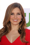 Sophia Bush. At the CBS Showtime And CW Party TCA Summer Tour Party, Beverly Hilton, Beverly Hills, CA 07-29-12 royalty free stock image