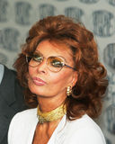 Sophia Loren. The most popular Italian actress, Academy Award-winning actress and former sex symbol Royalty Free Stock Images