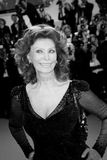 Sophia Loren Royalty Free Stock Photos