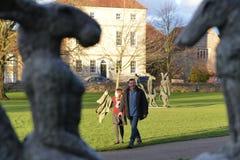Sophie Ryder sztuki wystawa przy Salisbury katedrą Obrazy Royalty Free