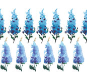 Sophisticated beautiful gorgeous bright tender gentle floral herbal spring summer colorful delphiniums located vertically pattern Stock Photography