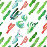 Sophisticated bright lovely artistic graphic herbal beautiful floral herbal gorgeous cute spring colorful cacti diagonal pattern Royalty Free Stock Photography