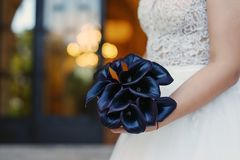 Sophisticated dark plum calla lilies bridal bouquet, the perfect accessory for a regal and mysterious effect. Sophisticated dark plum calla lilies bridal bouquet royalty free stock photos