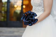 Sophisticated dark plum calla lilies bridal bouquet, the  perfect accessory for a regal and mysterious effect. Close-up on the hands of the bride wearing a stock photo