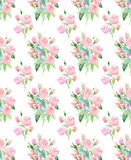 Sophisticated delicate tender cute elegant lovely floral colorful spring pink and beige roses with buds and leaves bouquets patter. N watercolor hand Royalty Free Stock Photos
