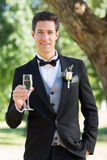 Sophisticated groom holding champagne flute in garden. Portrait of sophisticated groom holding champagne flute in garden Royalty Free Stock Photos