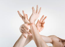 Sophisticated gymnasts hands expressing grace in the studio. Sophisticated art. Flexible tender gracious gymnasts hands locating in the white colored studio and stock photography