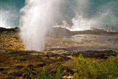 Sopladura del cuerno que echa en chorro, Kauai, Hawaii Fotos de archivo