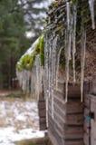 Sople na mieścą dachowego wiosna symbol zdjęcia stock