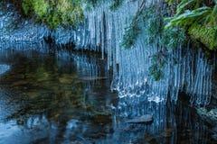 Sople nad jezioro Zdjęcia Royalty Free