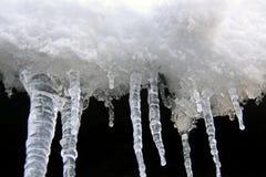 sople snow biały zima Obrazy Stock