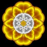Soplo de la flor de satén ilustración del vector