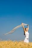 Soplo del viento Imagen de archivo libre de regalías