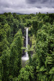 Sopoaga Falls. Sopoaga water fall on the South Pacific Island of Upolu, Samoa stock photography