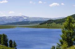 Soporte Altai Imágenes de archivo libres de regalías