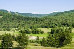 Soporte Altai Fotografía de archivo libre de regalías