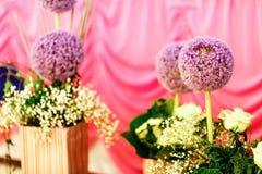 Soporte de flores violeta redondo interesante en floreros rayados Fotografía de archivo libre de regalías
