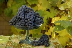 Soporte de fruta con las uvas Foto de archivo