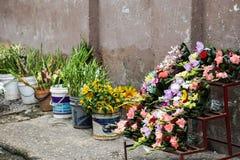 Soporte de la calle de la flor Fotografía de archivo