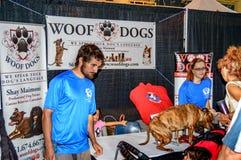 Soporte de la demostración de perros del tejido Fotos de archivo libres de regalías