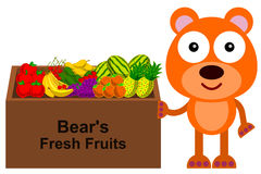 Soporte de la fruta del oso stock de ilustración