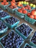 Soporte de la granja Foto de archivo libre de regalías