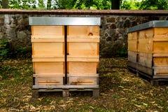 Soporte de las cajas de las abejas en un prado Foto de archivo libre de regalías
