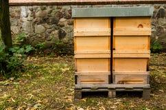 Soporte de las cajas de las abejas en un prado Imagen de archivo libre de regalías