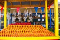 Soporte de las naranjas de la Florida Fotografía de archivo