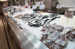 Soporte 5 de los pescados Fotos de archivo