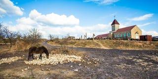 Soporte de Seopjikoji en la isla de Jeju Foto de archivo libre de regalías