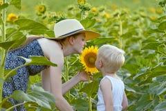 Soporte del hijo de la madre y del bebé e inhalar el olor del girasol en el fondo de un campo floreciente foto de archivo libre de regalías