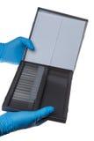 Soporte del laboratorio con un vidrio de cubierta micro Imagen de archivo libre de regalías