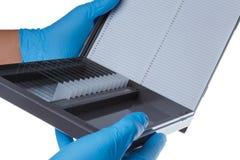 Soporte del laboratorio con un vidrio de cubierta micro Fotografía de archivo libre de regalías