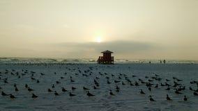 Soporte del salvavidas en la puesta del sol Fotos de archivo libres de regalías