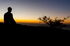 Soporte elegante del individuo cerca del árbol durante puesta del sol Foto de archivo