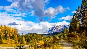 Soporte Fitzwilliam, este en la carretera de Yellowhead, parte de las montañas rocosas canadienses La mitad inferior es dolom?a imágenes de archivo libres de regalías
