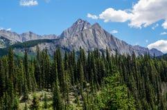 Soporte Ishbel en el parque nacional de Banff Imágenes de archivo libres de regalías