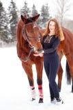 Soporte joven de la muchacha del jinete con el caballo en parque del invierno Foto de archivo libre de regalías