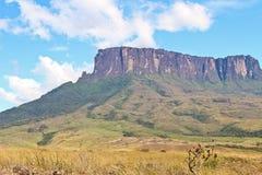 Soporte Kukenan en Venezuela, Suramérica fotos de archivo libres de regalías