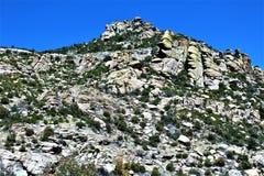 Soporte Lemmon, Tucson, Arizona, Estados Unidos fotografía de archivo