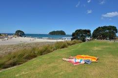 Soporte Maunganui - Nueva Zelanda Fotografía de archivo libre de regalías