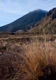 Soporte Ngauruhoe/Mt Condenación según lo visto del gran paseo de Tongariro en la isla del norte en Nueva Zelanda imagenes de archivo
