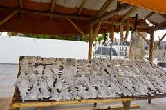 Soporte salado en seco de los pescados fotografía de archivo libre de regalías