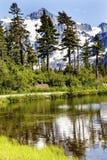 Soporte Shuksan Washington los E.E.U.U. de los árboles de hoja perenne del lago picture Fotografía de archivo