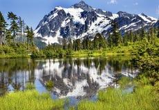 Soporte Shuksan Washington los E.E.U.U. de los árboles de hoja perenne del lago picture Fotografía de archivo libre de regalías